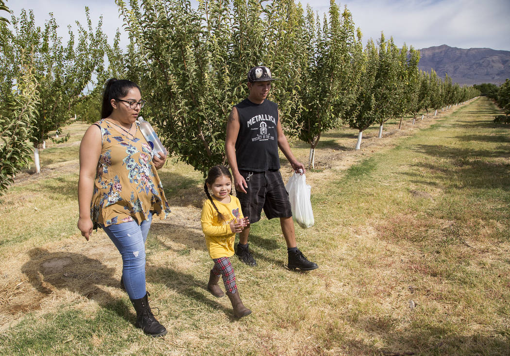 Gennive Banda and her husband Jerry Reyes walk with their daughter Emma Reyes, 4, to look for a ...