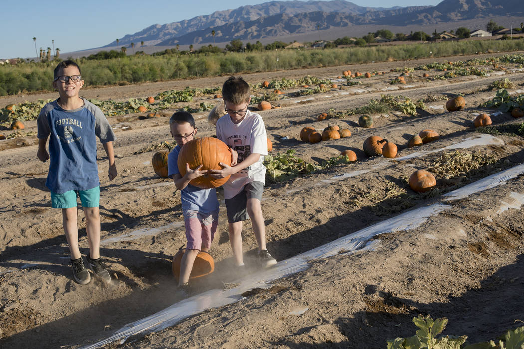 Dominic W., 9, from left, walks alongside his brothers Dennis W., 7, and Elijah W., 9, as they ...