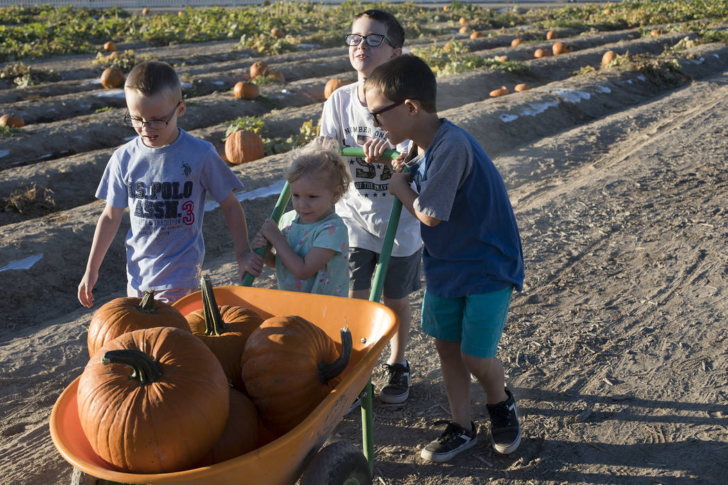 Dennis W., 7, from left, his siblings Emma-lee W., 5, Elijah W., 9, and Dominic W., 9, push a w ...