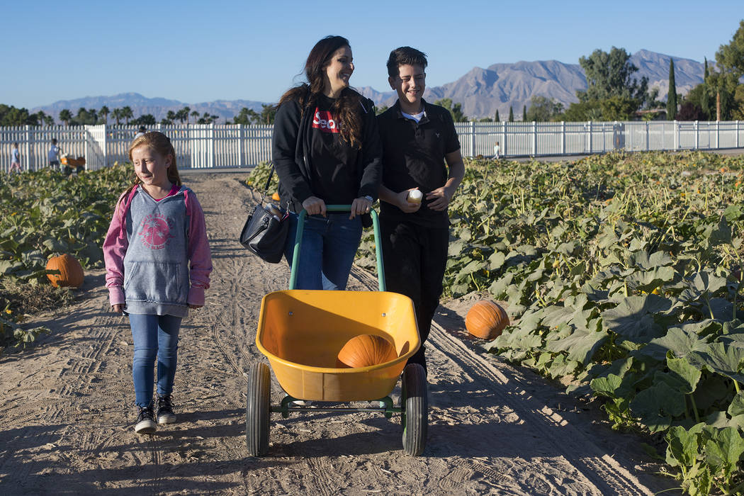 Melissa Swasey, center, looks for pumpkins with her daughter Ella Swasey, 9, left, and her son ...