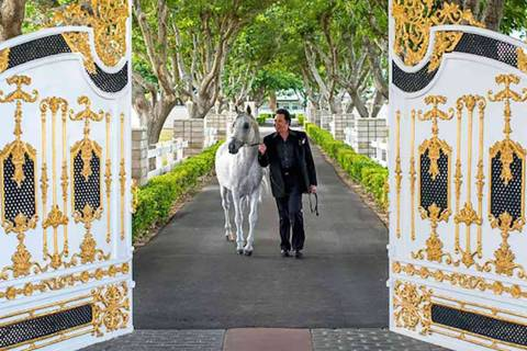 Wayne Newton is shown at the gated entrance of Casa de Shenandoah. (Wayne Newton's Casa de Shen ...