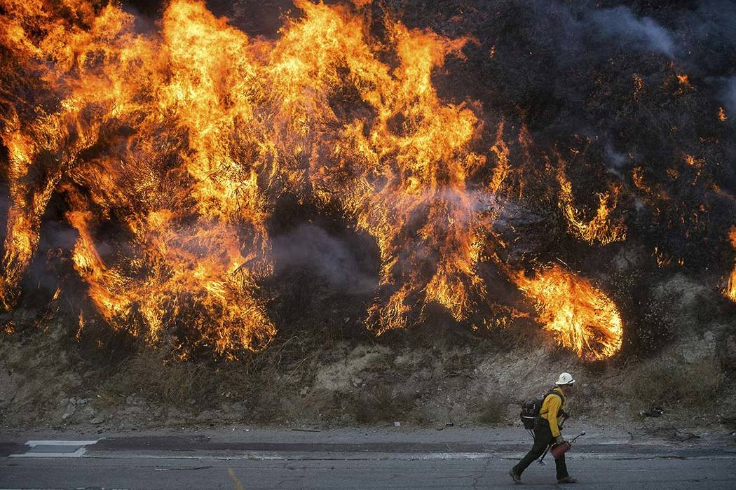 Flames from a backfire, lit by firefighters to stop the Saddleridge Fire from spreading, burn a ...