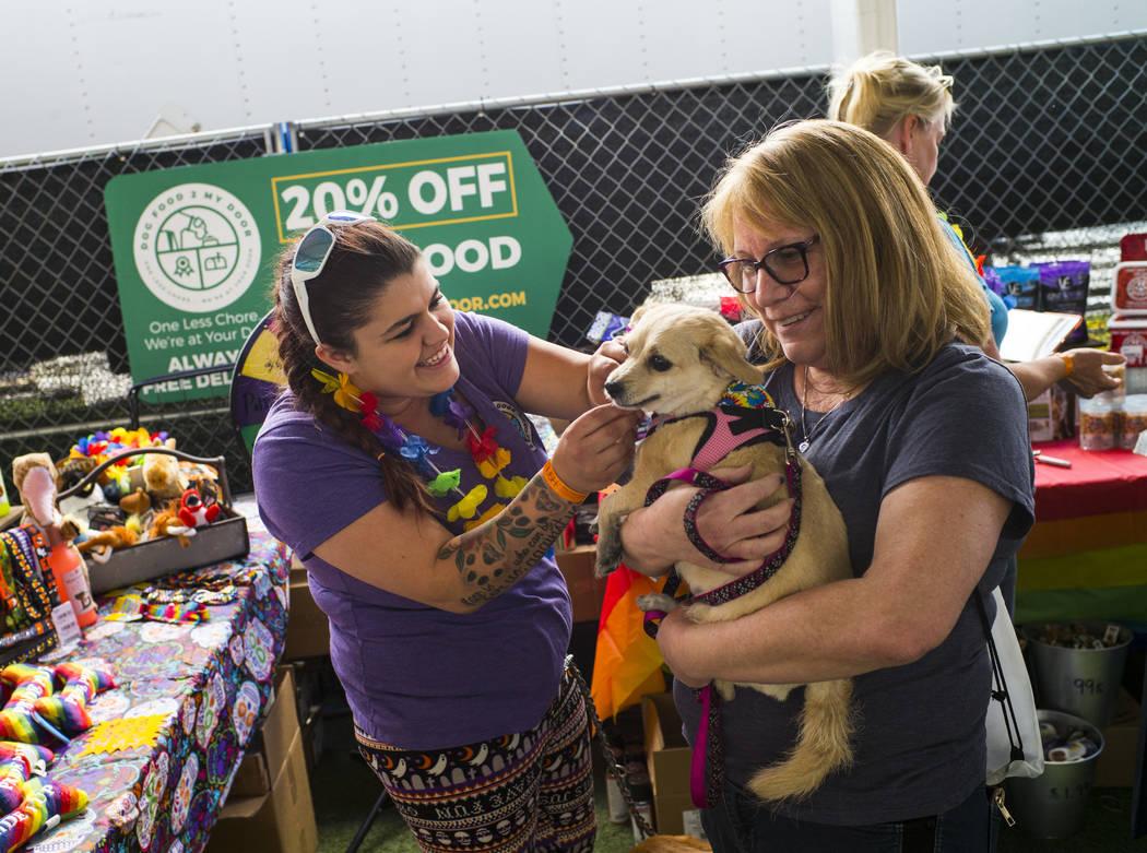 Chloe Kelly, of Dog Food 2 Go, puts a bandana on Dakota, held by Lisa Giles, of Las Vegas, at t ...