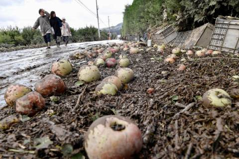 People walk through a muddy street with fallen apples littered in Nagano, central Japan Tuesday ...