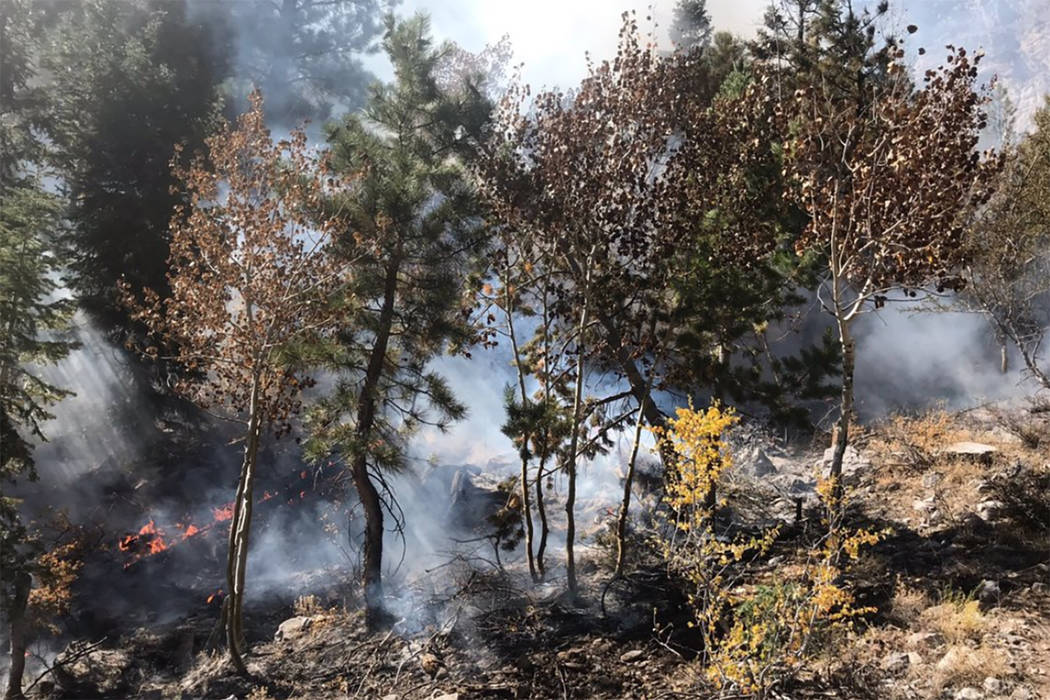 Fire and smoke are seen in the Mary Jane Falls area of Mount Charleston in this photo from the ...