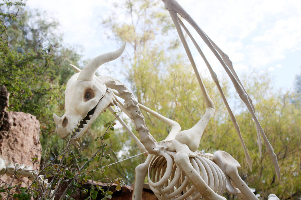 Decorations for the family friendly Haunted Harvest at the Springs Preserve in Las Vegas on Thu ...