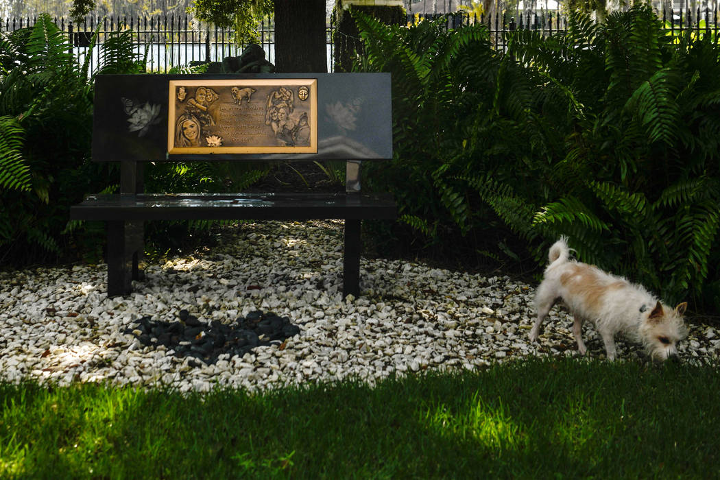Victoria Siegel's dog Zen walks near a memorial for Victoria at the Siegel family home in Winde ...