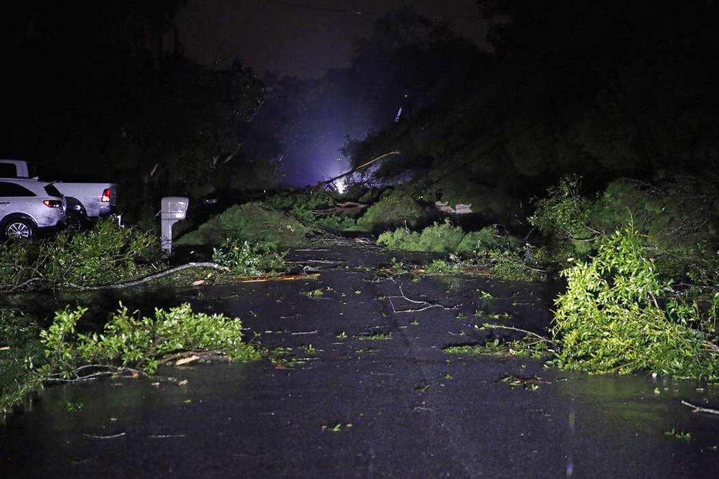 Downed power lines, trees damage homes as Tropical Storm Nestor passed the area on Saturday, Oc ...