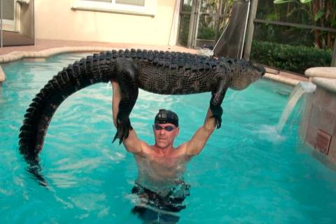 In this Wednesday, Oct. 15, 2019 handout photo shows Paul Bedard raising a 9-foot alligator ove ...