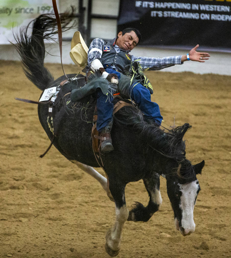 Bareback rider Tyrick Wilson hangs on tight to his horse during the first round of the Indian N ...