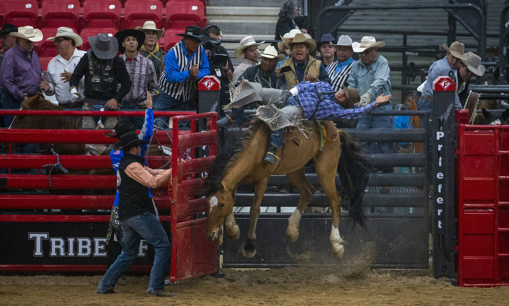 Bareback rider Rodney Begay rides with his horse elevating in the chute during the first round ...