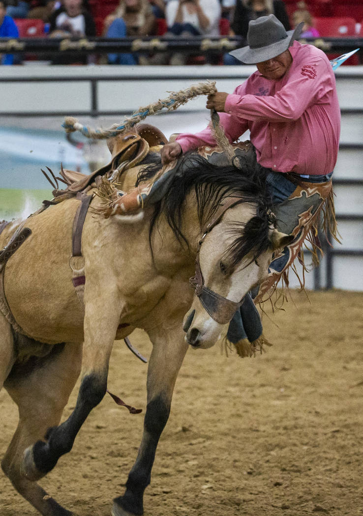 Saddle bronc rider Robert Burbank gets bucked off of the horse during the first round of the In ...