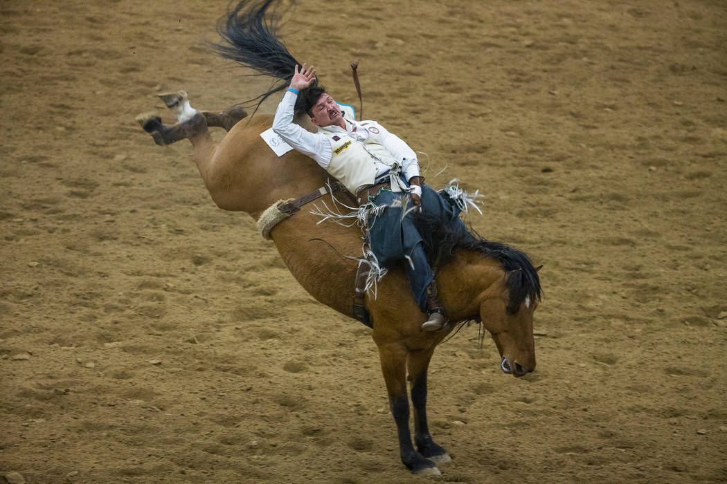 Bareback rider Justin Randall leans way back on his horse during the first round of the Indian ...