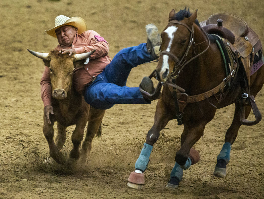 Steer wrestler Michael Bates is out of position to make the grab as he comes down on the steer ...