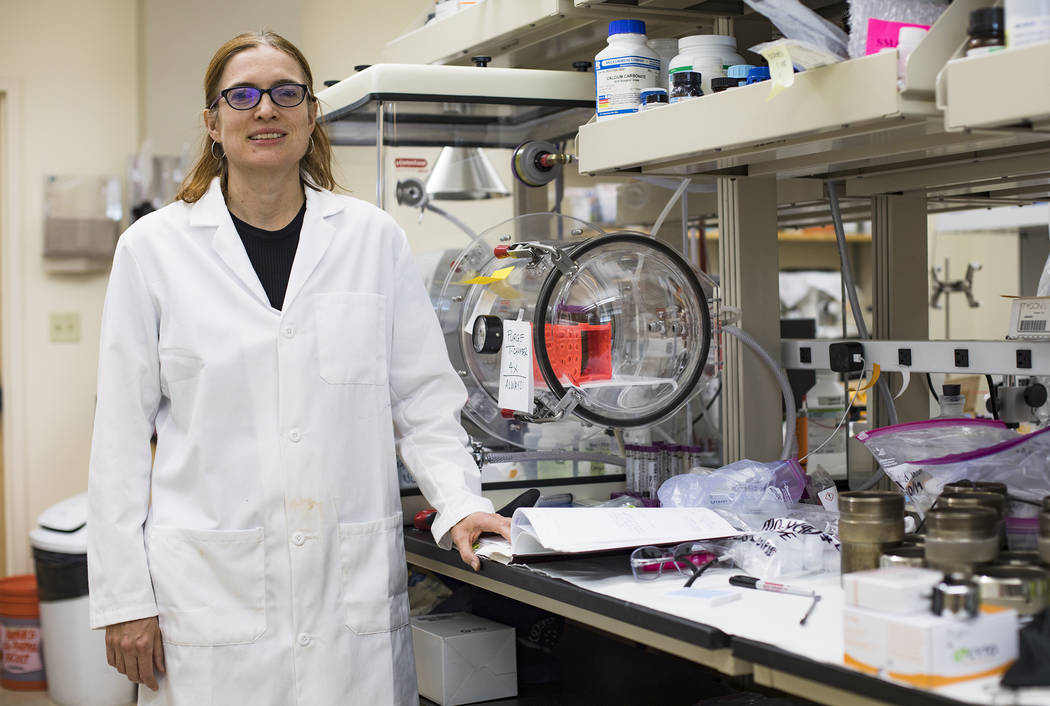 Dr. Libby Hausrath at her lab at the University of Las Vegas in Las Vegas, Thursday, Oct. 24, 2 ...