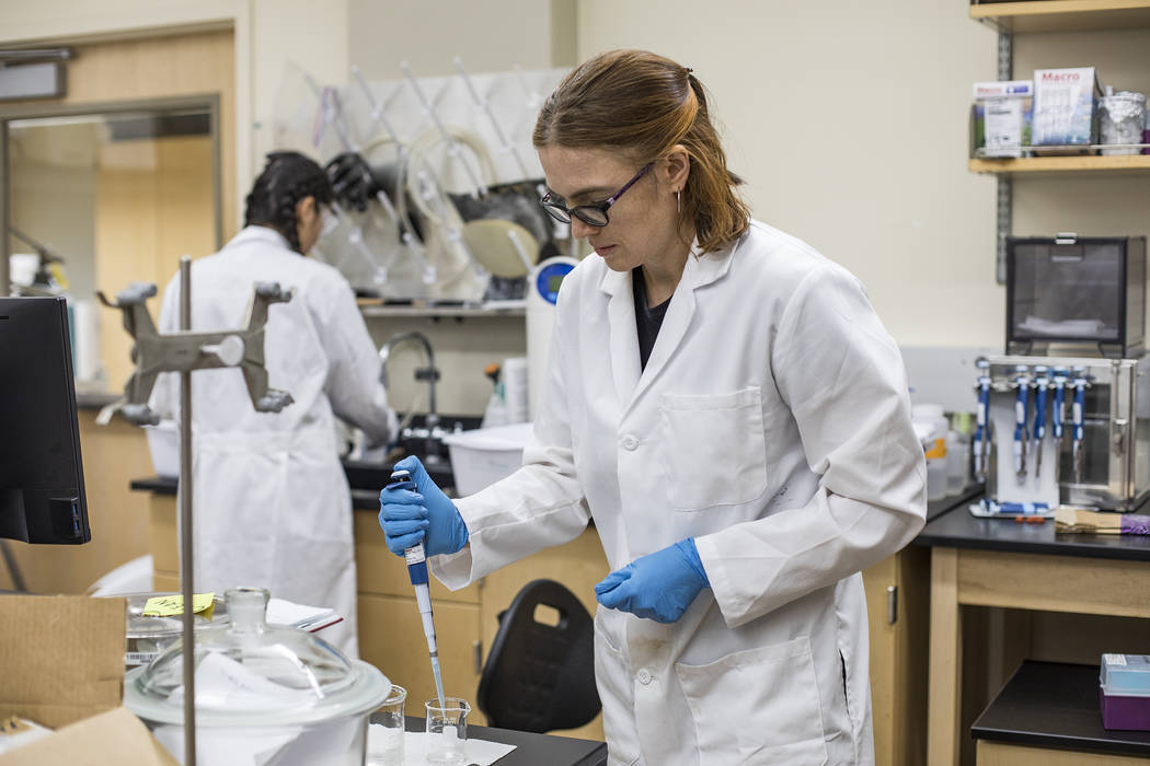 Dr. Libby Hausrath works in her lab at the University of Las Vegas in Las Vegas, Thursday, Oct. ...