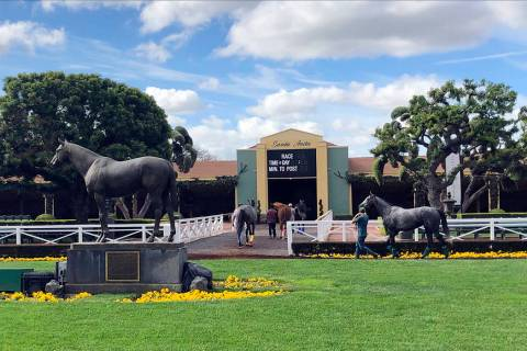 Horses are led to paddocks past the Seabiscuit statue during workouts at Santa Anita Park in Ar ...