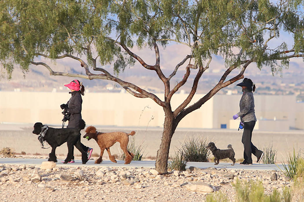 Two women bundled up against cold weather walk their dogs at Vivaldi Park near Henderson Execut ...