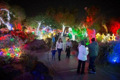 Holiday goers enjoy the lights at Ethel M Chocolates Botanical Cactus Garden on Monday, Novembe ...