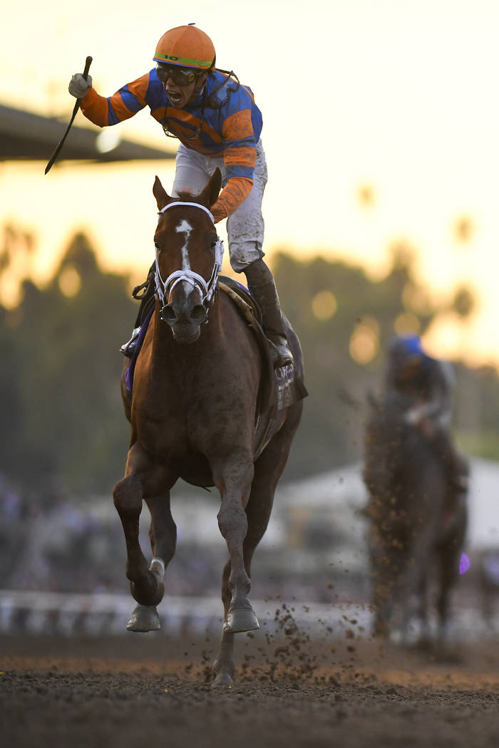 Irad Ortiz Jr. aboard Vino Rosso celebrates after winning the Breeders' Cup Classic horse race ...