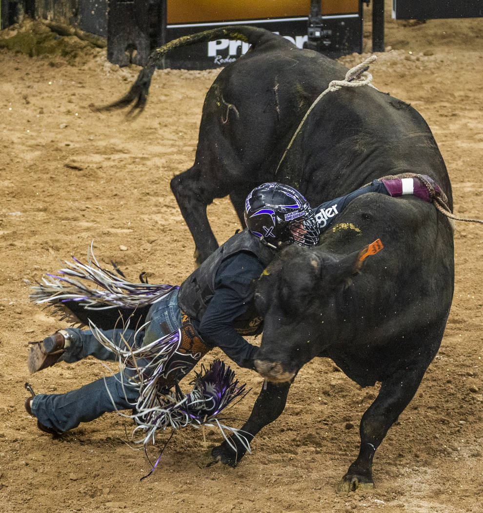 Daylon Swearingen is dragged by the hand by Safety Meeting during the last day of the PBR World ...