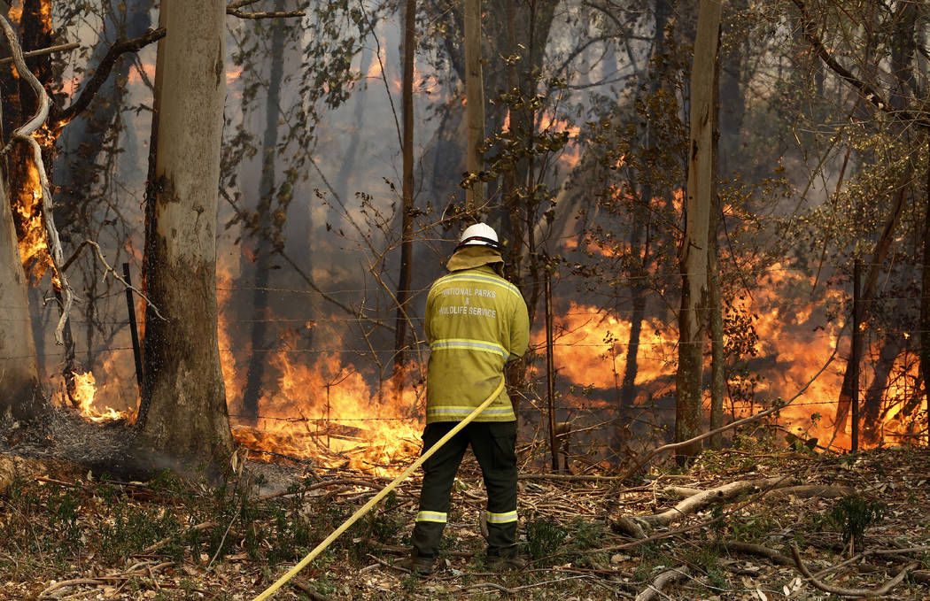 A National Parks and Wildlife crew member fights flames at Half Chain road at Koorainghat, near ...