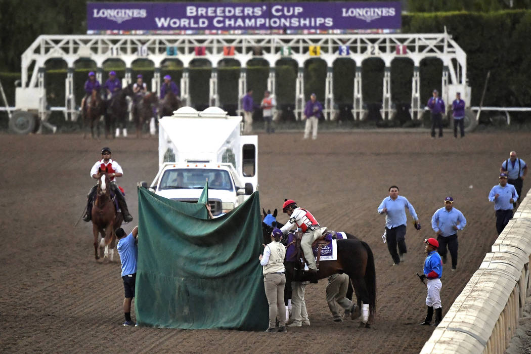 Track workers treat Mongolian Groom after the Breeders' Cup Classic horse race at Santa Anita P ...