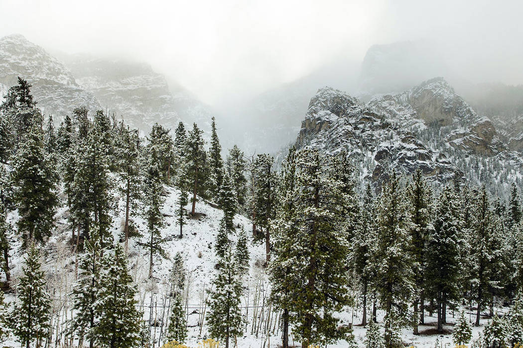 The Thanksgiving week forecast calls for 8 to 25 inches of snow possible above 4,000 feet in th ...