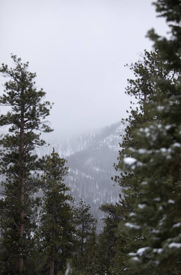 Fog covers the snowy mountains on Thursday, Nov. 28, 2019, at Upper Lee Meadows in the Spring M ...