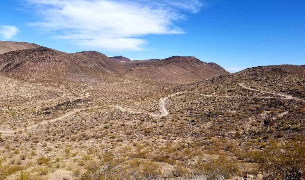 Trails winding through vastness. (Natalie Burt)