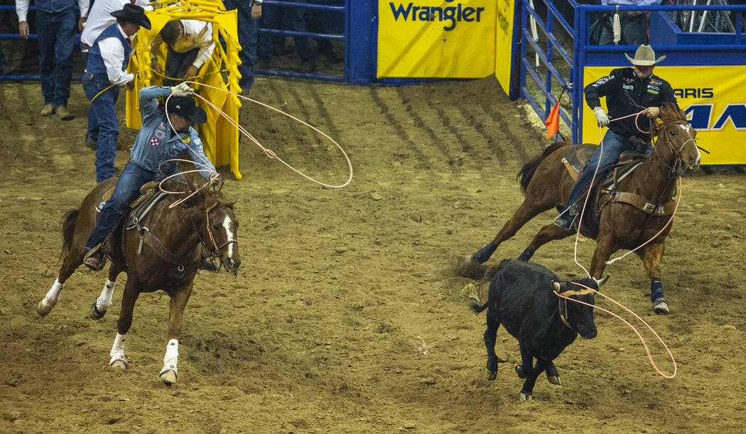 Heeler Jake Long, left, of Coffeyville, Kan., and Header Clay Tryan of Billings, Mont., work to ...