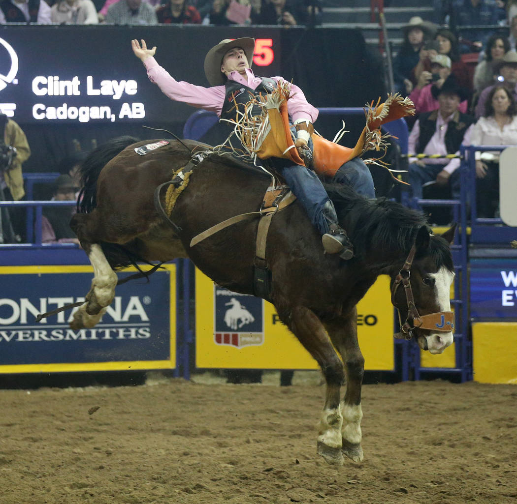 Clint Laye of Cadogan, Canada rides All Pink during Bareback Riding in the fifth go-around of t ...