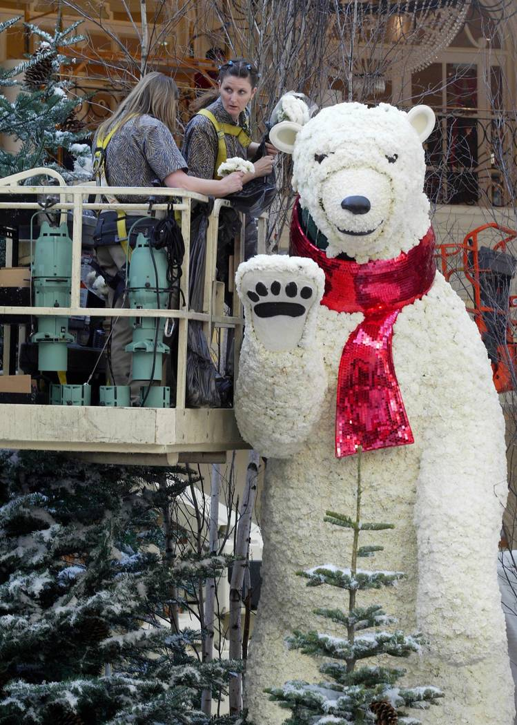 Gardeners Maryanne Deem, left, and Kolana Dixon create a polar bear with carnations in preparat ...