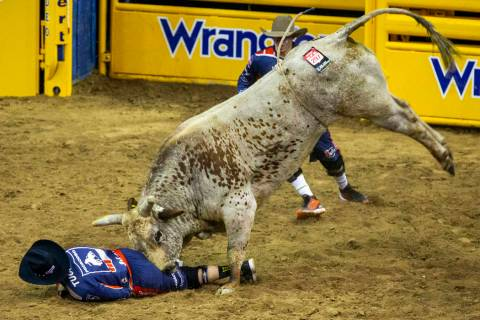 A bullfighter is driven into the dirt by Red Harvest in Bull Riding during the fourth go round ...