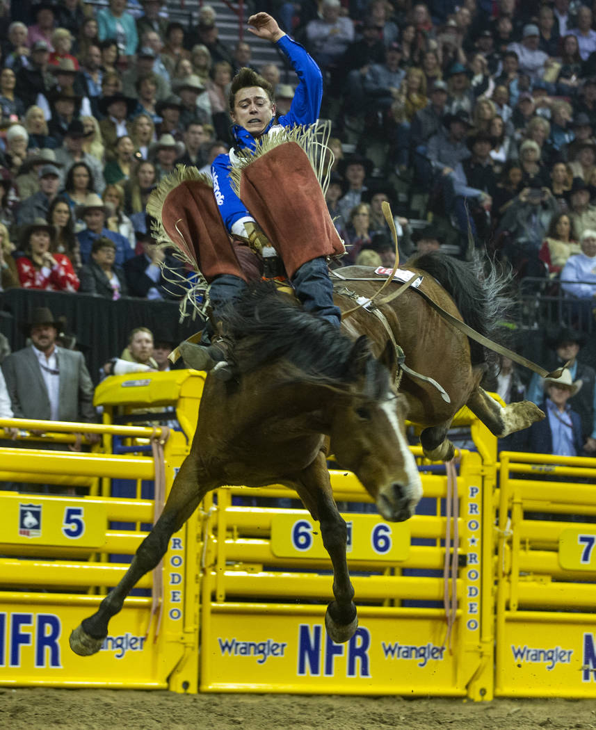 Clayton Biglow of Clements, Calif., rides Ankle Biter to a first place score of 91.5 points in ...