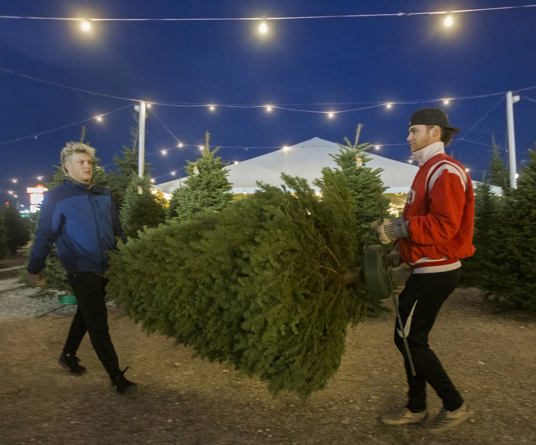 Justin Hausner, left, and Brad Stone carry a newly bought Christmas tree off the lot on Wednesd ...