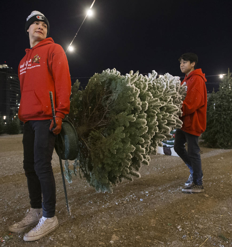 Phoenix Dante, left, and Lincoln Shorter carry a newly bought Christmas tree to a customers car ...