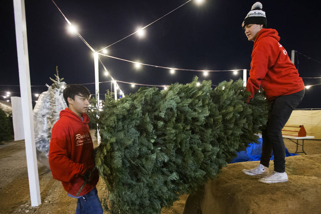 Lincoln Shorter, left, and Phoenix Dante carry a newly bought Christmas tree to a customers car ...