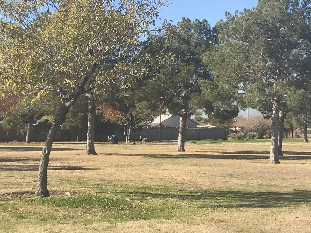 Whitney Neighborhood Park is pictured Dec. 13 in southeast Las Vegas. (Julie Wootton-Greener/La ...