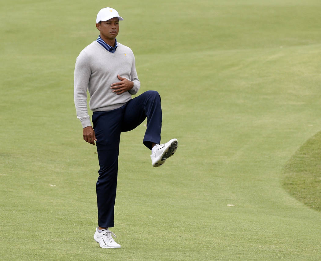 U.S. team player and captain Tiger Woods stretches his leg on the 7th fairway in their foursome ...