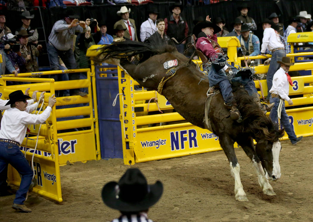 Jake Brown of Cleveland, Texas rides Blessed Assurance in Bareback Riding during the ninth go-a ...