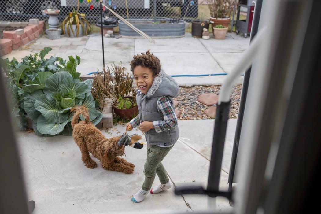 Olamide Ajayi, 6, plays with Nalulani, his mentor Lisa Bernauer's therapy dog, at Bernauer's ho ...