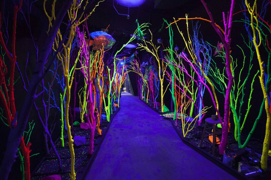Roaming through portals and shadowy pathways leads to a bioluminescent aquarium at Meow Wolf Ho ...
