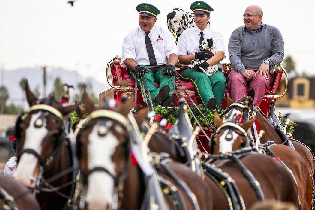 Budweiser red beer wagon driver Eric Reisenberger is joined by Shelby Zarobinski with Weiser, a ...