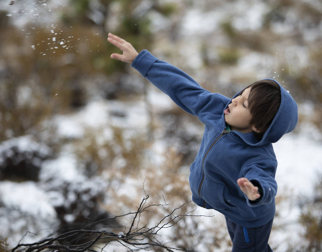 Daniel Birecki, 7, of Alberta, Canada, throws a snowball after his family pulled to the side of ...