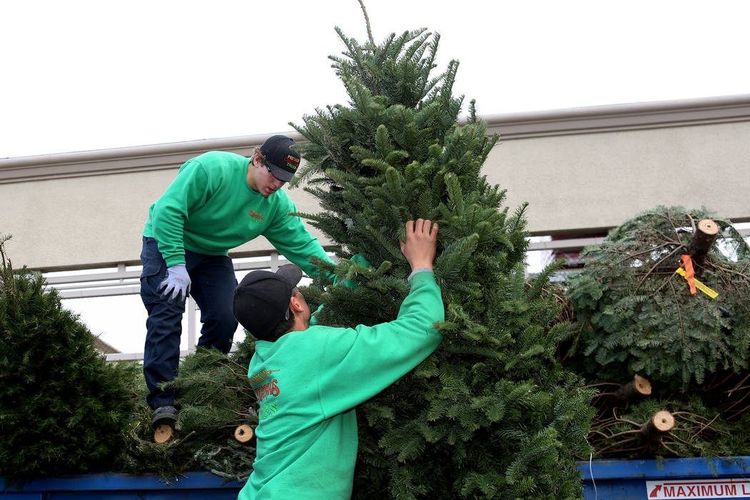 Free Christmas tree recycling is now available at more than 30 Las Vegas Valley locations. (Mic ...