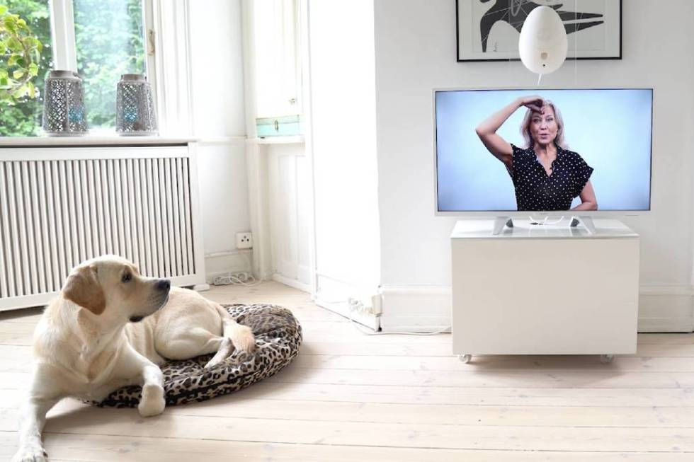 The Go Dogo gaming console for dogs will be a gadget on display at CES. It has a virtual traine ...