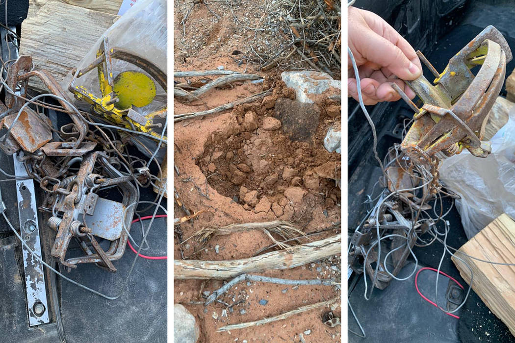 Traps found in the Red Rock Canyon National Conservation Area (Facebook)