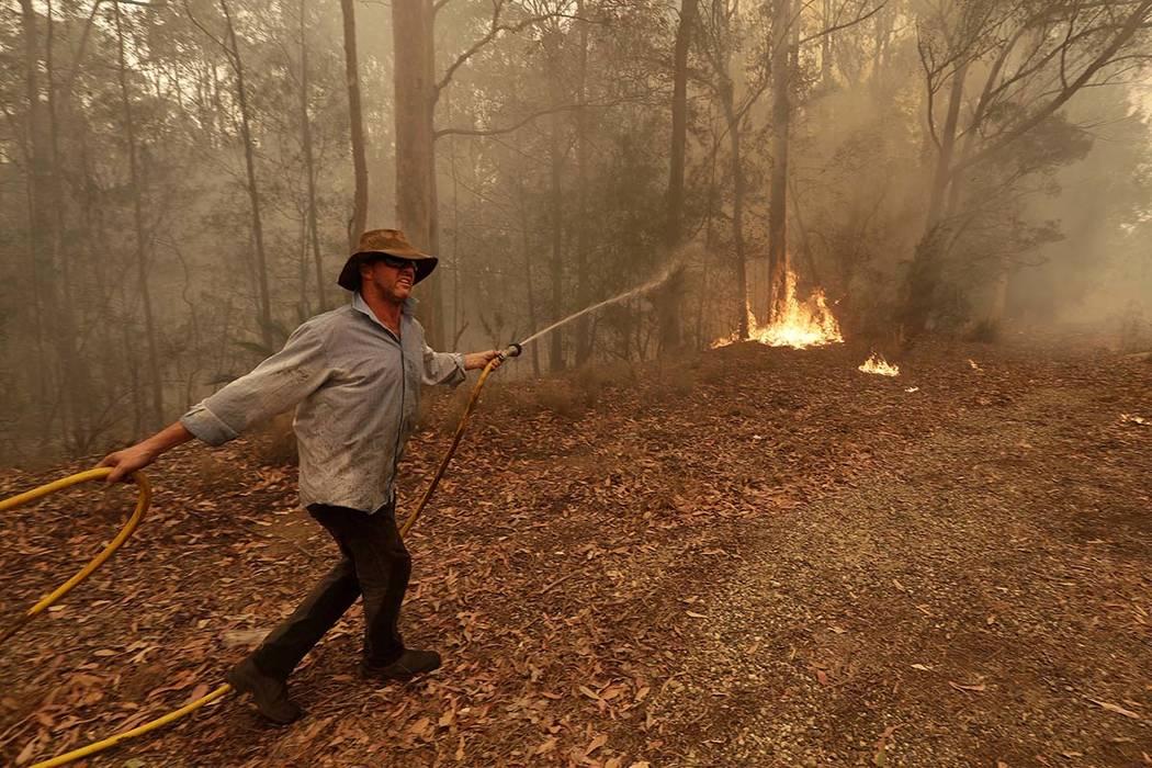 moruya fire - photo #26