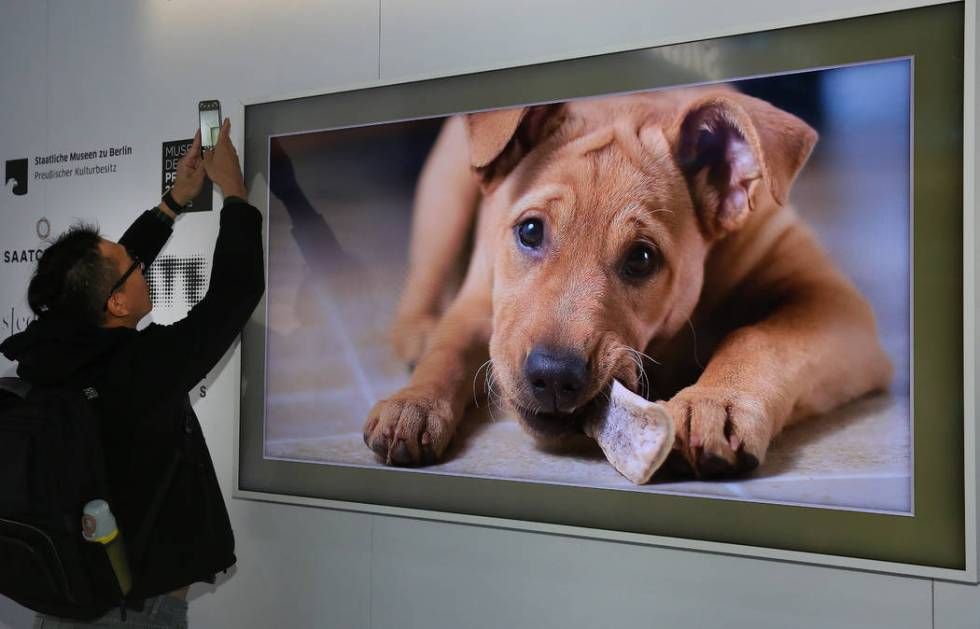 Samsung 'The Frame' TV, wall art that looks like a picture frame, complete with digital still a ...